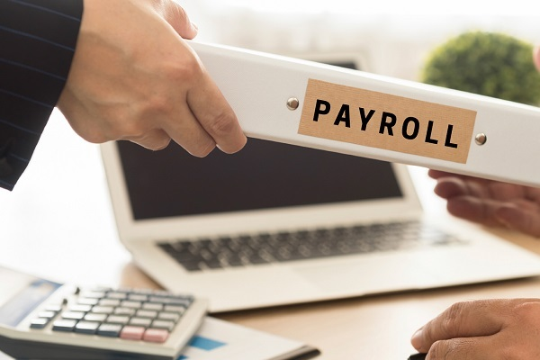 Payroll Services in Udaipur