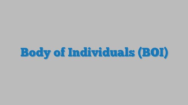 Body of Individuals (BOI) Consultancy