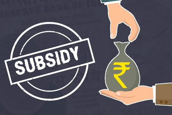 Subsidy grants services