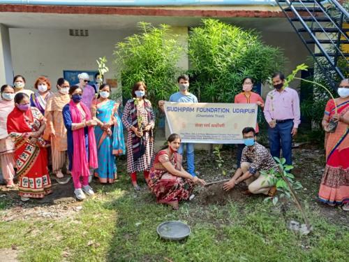 Tree Plantation Govt sen sec sector-4