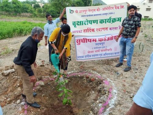 Tree Plantation. UCCB(1)