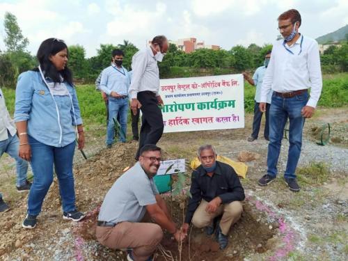 Tree Plantation. UCCB(2)