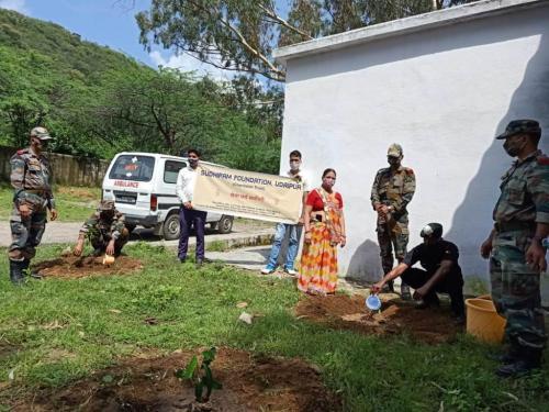 Tree Planation army area(2)