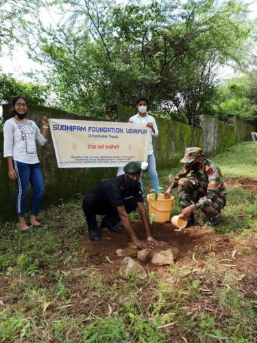 Tree Planation army area(4)
