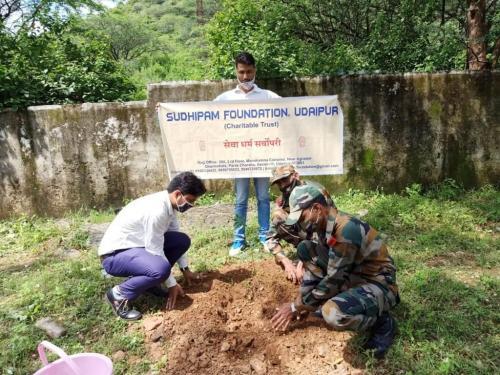 Tree Planation Army Area